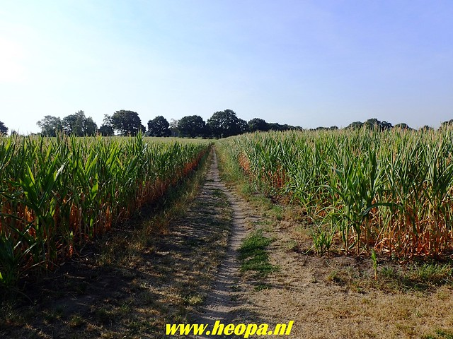 2018-08-02 Holten naar Laren (Gld)  (13)