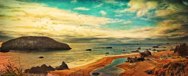 Pacific Coast Slide