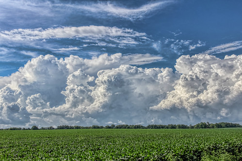 2018 canon eost5 july backroads clouds corn fields sky soybeans weather troy illinois unitedstates us