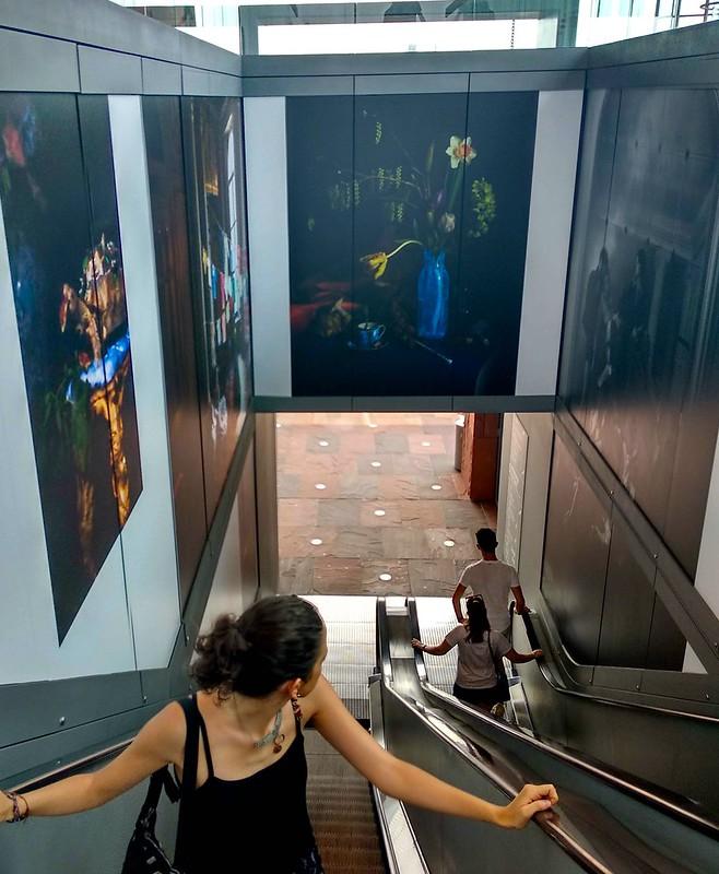 escaleras MAS