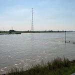 Der Rhein an einem heißen Sommertag