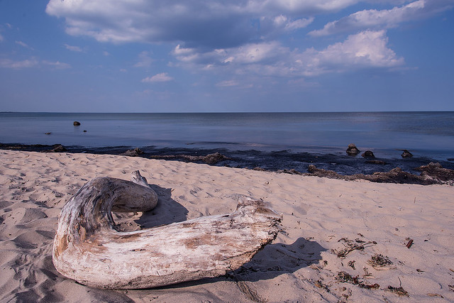 Beach in Vitemölla