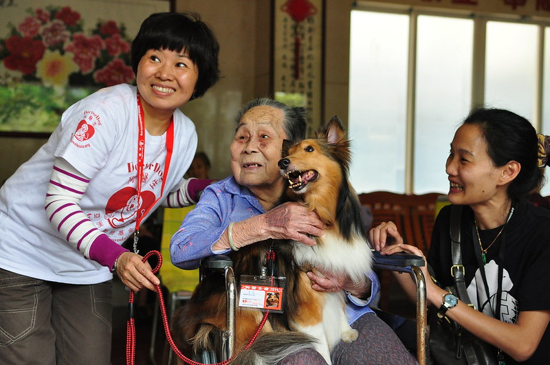 Dr Dog and human companion pay a visit to a nursing facility for the elderly