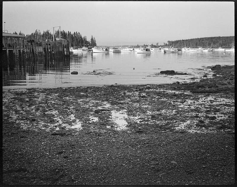 harbor, low tide, Owl's Head, Koni Omega Rapid 100, Super Omegon 90mm f-3.5, Arista.Edu 200, Ilford Ilfosol 3 developer, 7.18.18