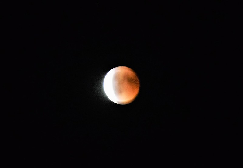 Moon Eclipse 27.07 (31)