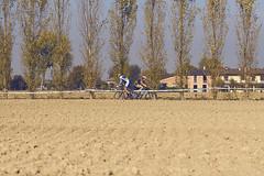 ciclocross #177