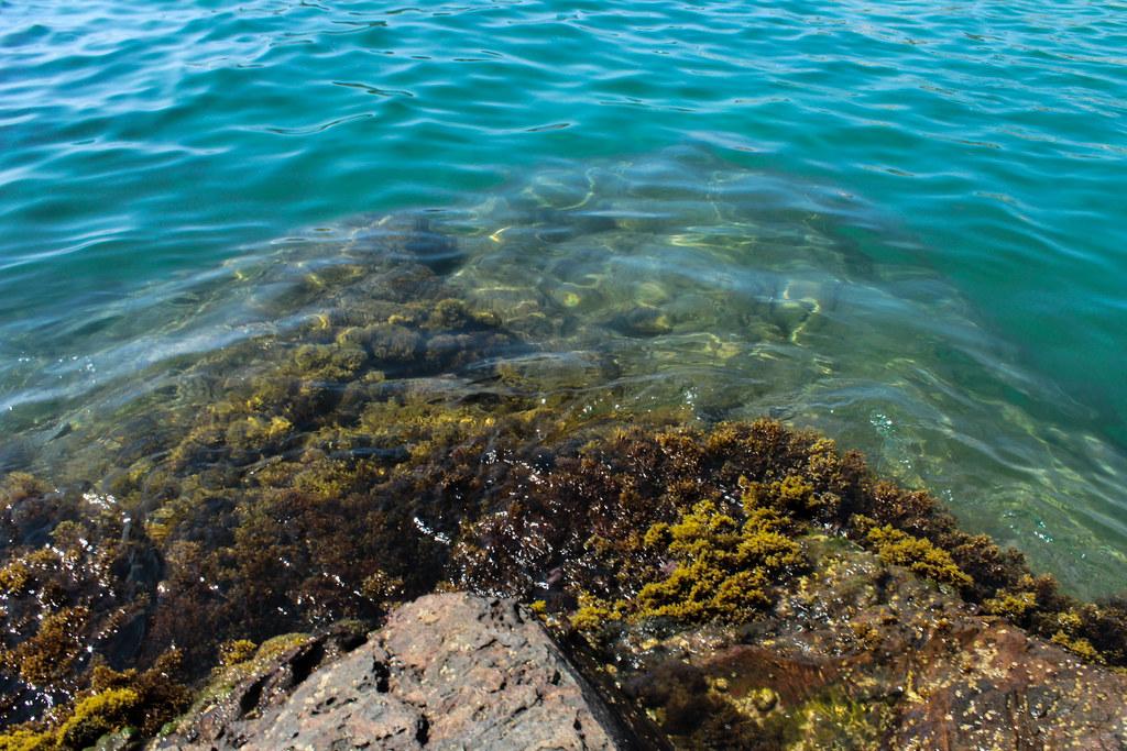 Palamós Sea