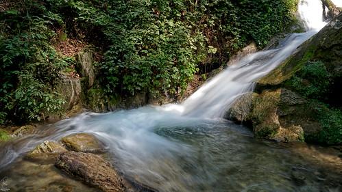 landscape nature view river water slowshot green jungle waterfall iran persia flow طبیعت ایران