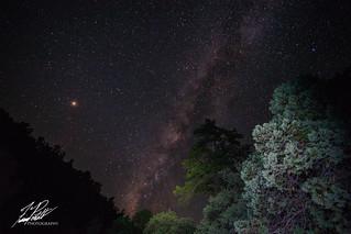 Madera Starry Night   by Frank Portillo