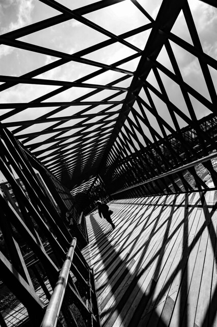 InTO the Geometry
