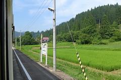 駅の裏は田んぼ