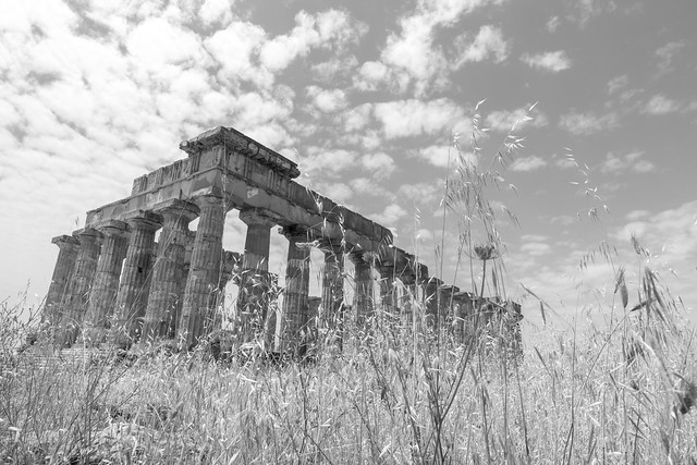 The Greek ruins of Selinunte