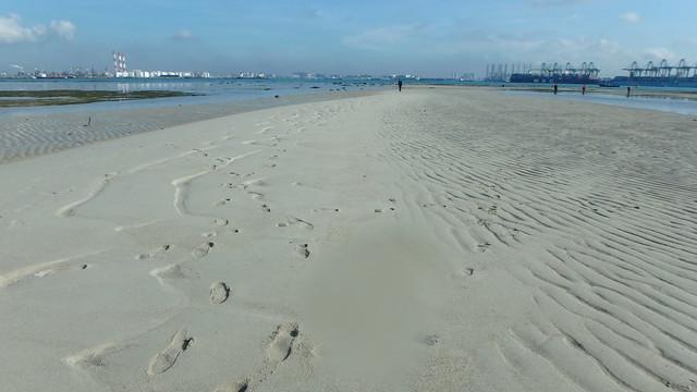 Sand bar at Cyrene Reef