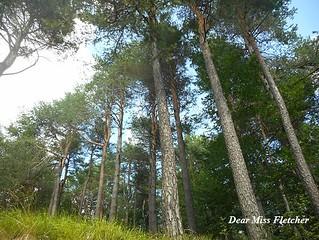 Lago delle Lame (15) | by Dear Miss Fletcher