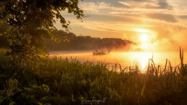 Dawn Ascending