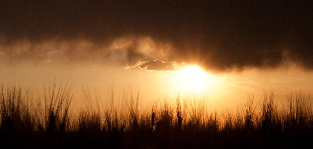 The Sun Wins