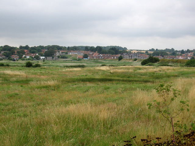 Fresh Marshes, Blakeney