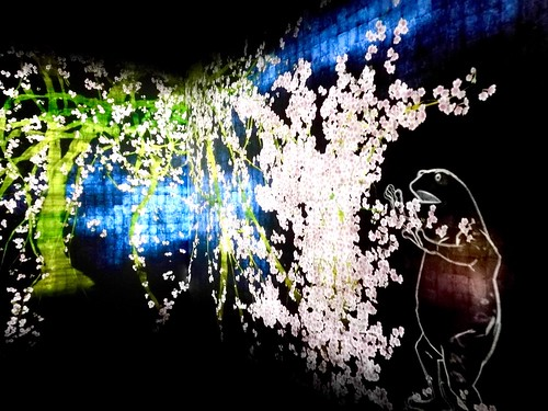 teamLab | National Gallery Singapore edition | by wordingart