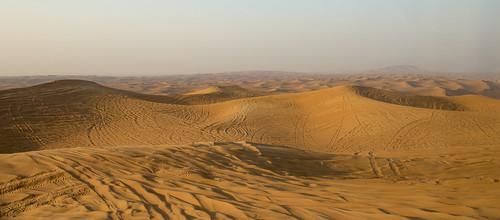 природа nature пейзаж landscape dmilokt пустыня desert nikon d750 d3 ins beginnerdigitalphotographychallengewinner storybook
