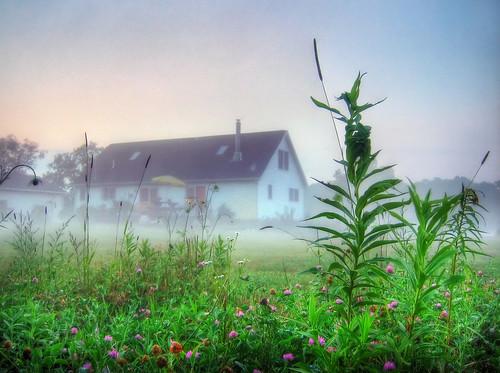morning house mist plant blur home grass fog photoshop garden early soft glow michigan low ground villa hdr tophdr iptclightandfog abigfave