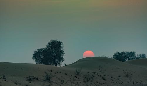природа nature пейзаж landscape dmilokt пустыня desert nikon d750 d3 ins red красный