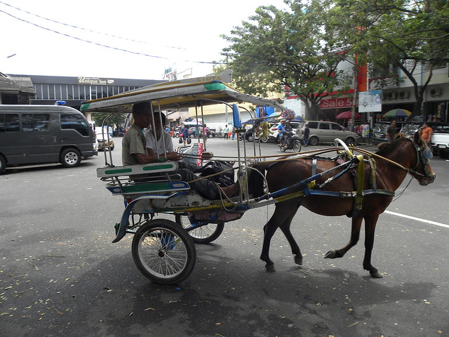 Horse-drawn cart in Manado, Northern Sulawesi, Indonesia - Повозка. Город Манадо, Сулавеси