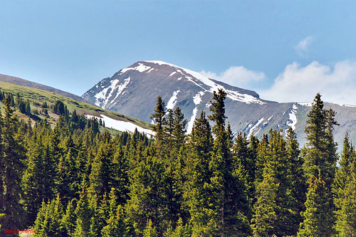 landscape scenery mountain forest trees snow colorado unitedstates