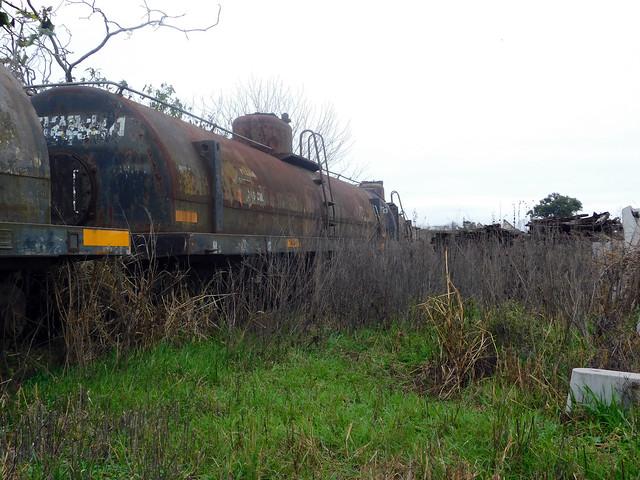 Trenes abandonados. Patio Sorrento. Belgrano