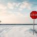 STOP (winter) by Andrey Baydak