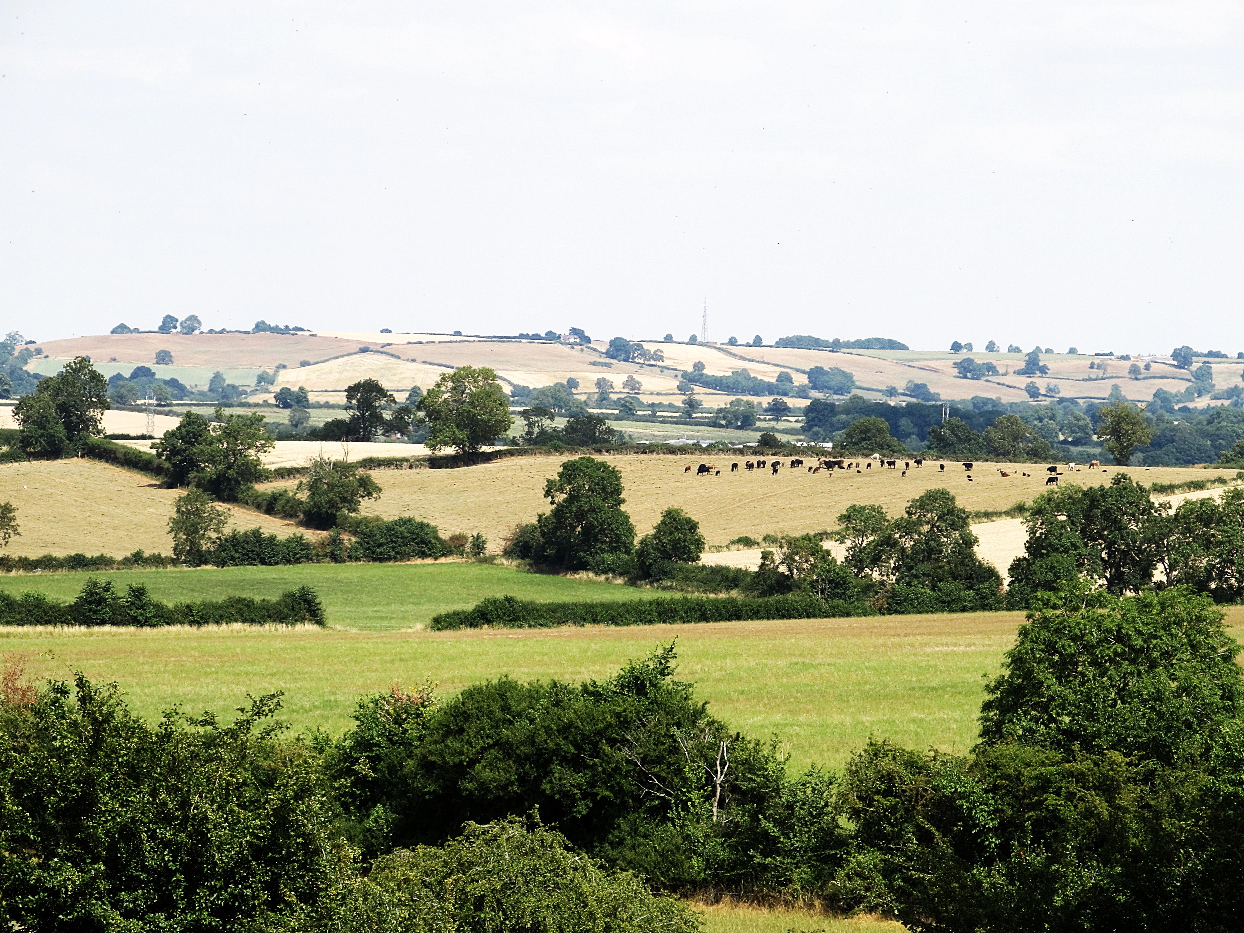 Elevation of Naseby, Northampton NN6, UK - Topographic Map ...