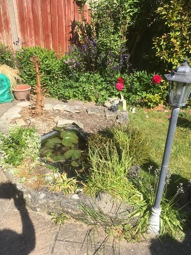 Pond renovation Southampton