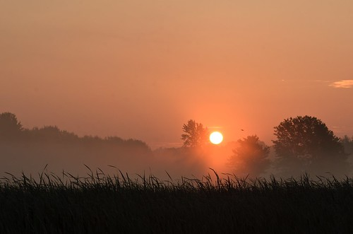 Sunrise over the Marsh | by hd.niel