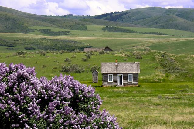 The old farm Cesterfield Idaho