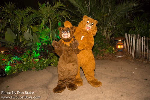 Meeting Koda and Kenai | by Disney Dan