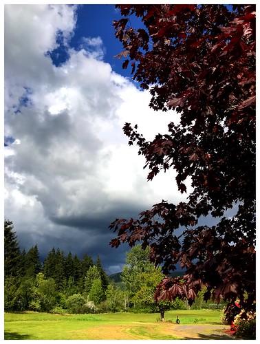 john deere mowing camera lawn clouds squalicum