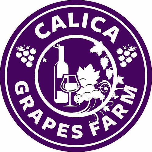 Calica Grapes Farm | by Traveling Morion