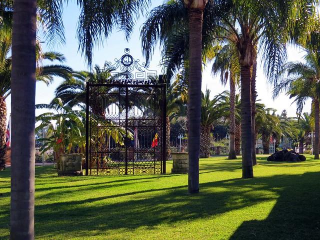 IMG_0582 - il giardino delle palme