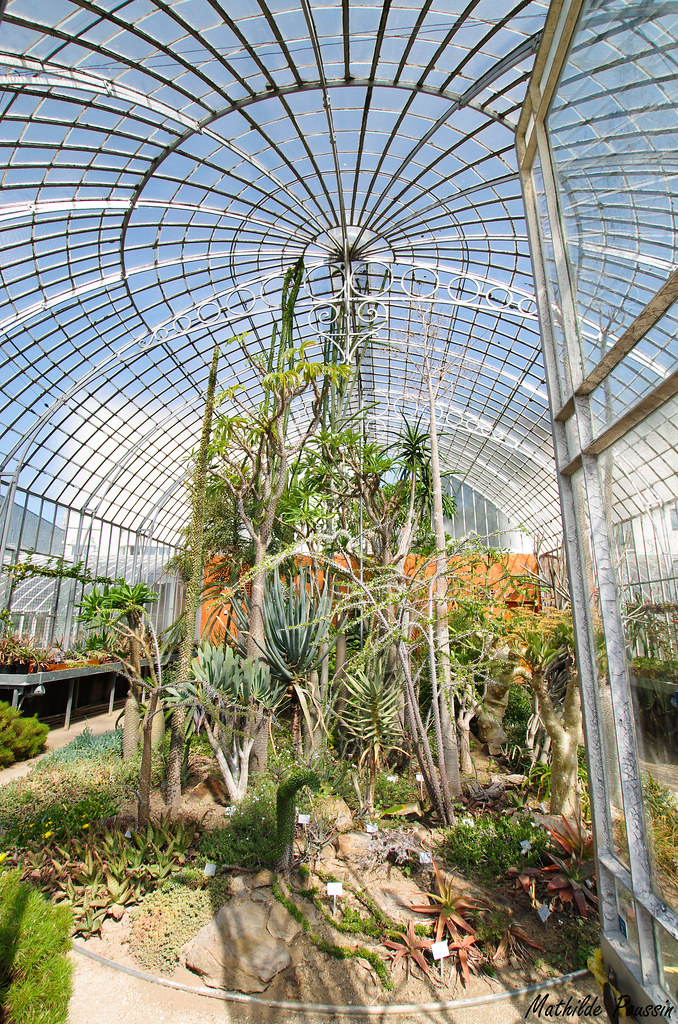 Jardin des plantes Nantes | Mathilde Poussin | Flickr