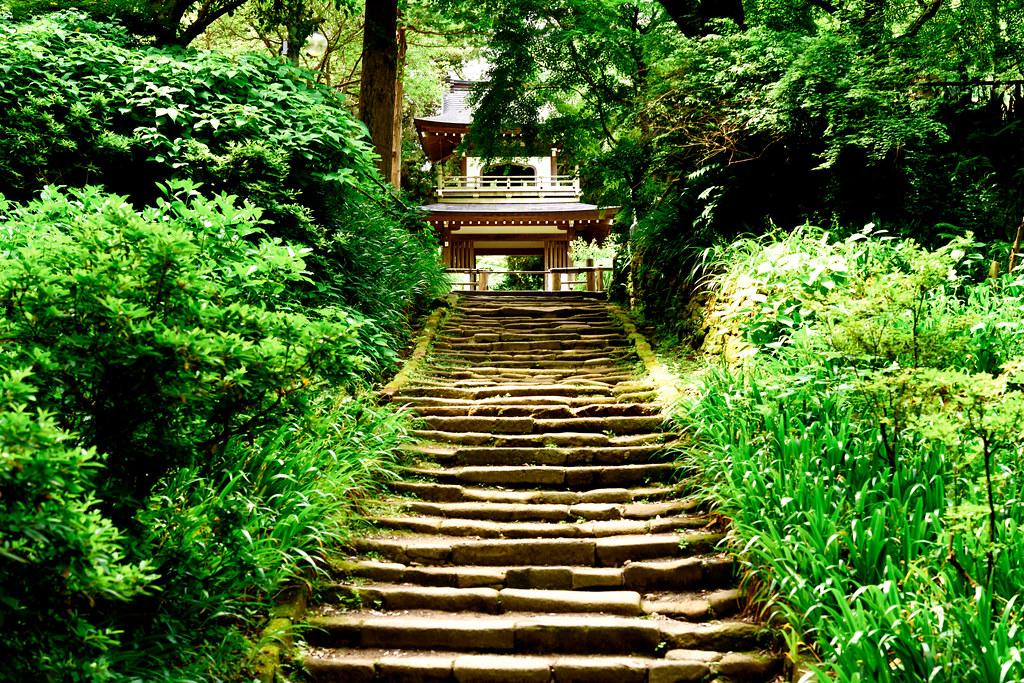 Main Gate of Jochiji Temple in Kamakura : 北鎌倉・浄智寺 三門