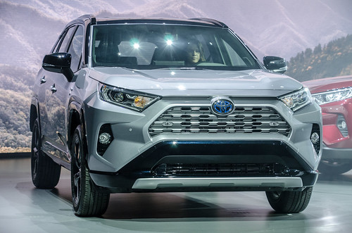 2019 Toyota RAV4 Photo