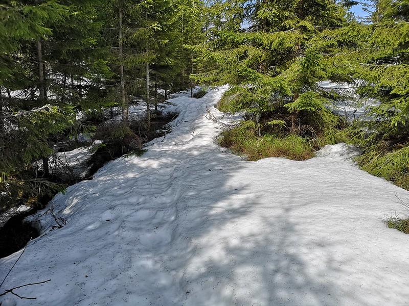 01-Snø på vei mot toppen
