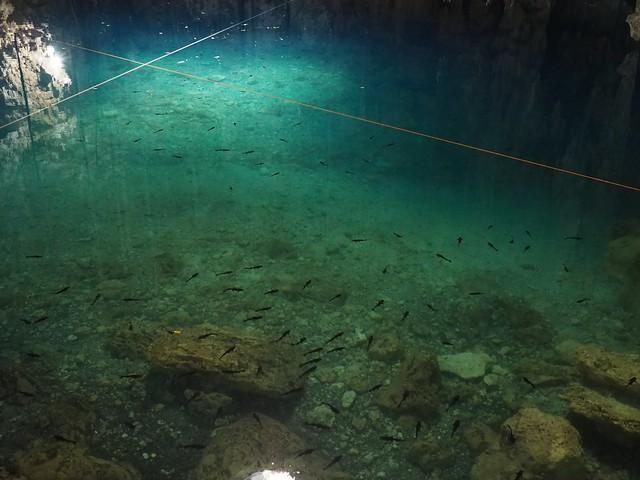 土, 2018-03-03 12:07 - Cenote Xkeken