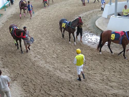 ロイヤルターフクラブ競馬場の装鞍所で騎乗する騎手