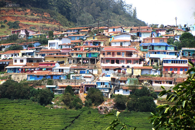 Elk Hill residents at Ooty