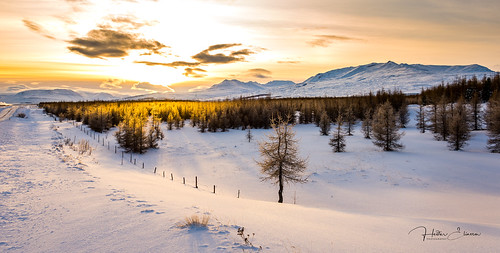 landslag sól snjór ský fjöll tré moldhaugarháls hlíðarfjall kerling súlur eyjafjörður akureyri hálsaskógur ísland iceland vetur winter piparinn nikond610 heidar breathtakinglandscapes