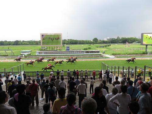 タイの競馬場のレース風景