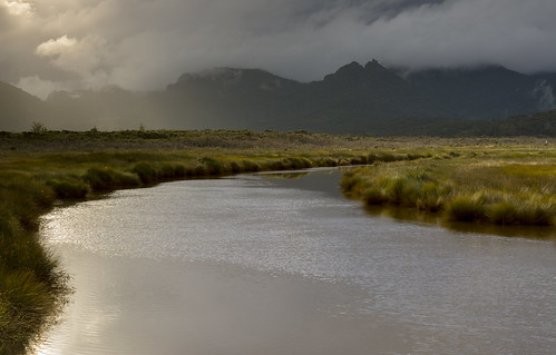 newzealand tramping greatbarrierisland river sunset tussock cloud kaitoke