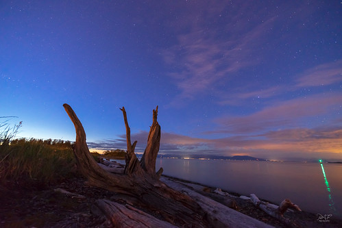 nanaimobc nanaimo bc britishcolumbia canada vancouverisland piperslagoon water waterfront sony sonya7m2 a7m2 beach log logs blue bluehour clouds cloud stars landscape landscapephotography ocean oceanscape shoreline shore