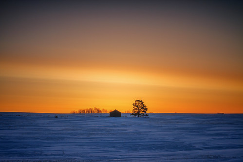 sunrise winter snow morning sparse landscape cold