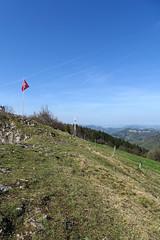 Vogelberg (1204 m.ü.M.)